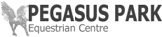Pegasus Park Logo