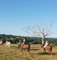 Byron Bay horse riding