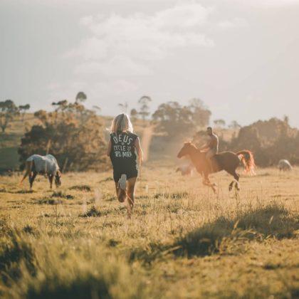 Byron Bay Horses
