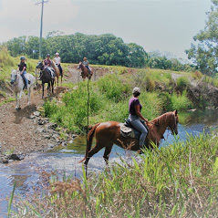 Byron Bay Horse Riding Byron Creek